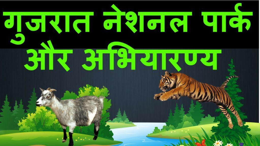 Gujarat National Park